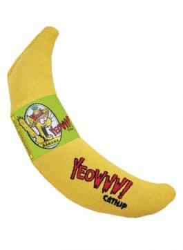 Chicata Banana Javame