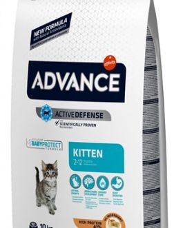 Advance cat kitten chicken / rice